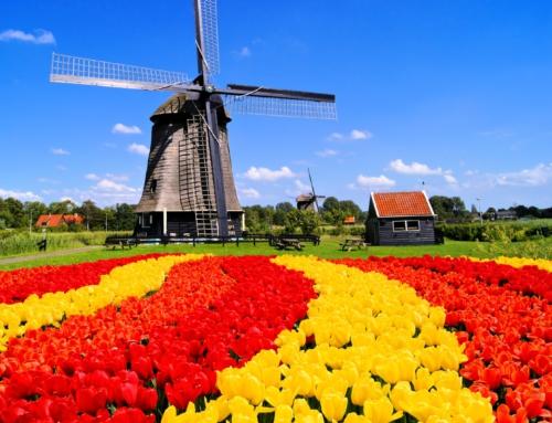 Amor en Flandes. Príncipe y mendigo